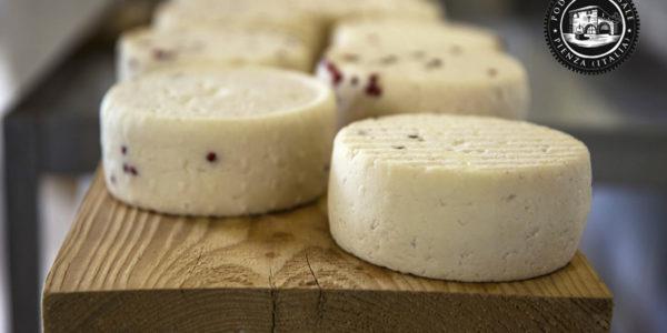 Come conservare il formaggio