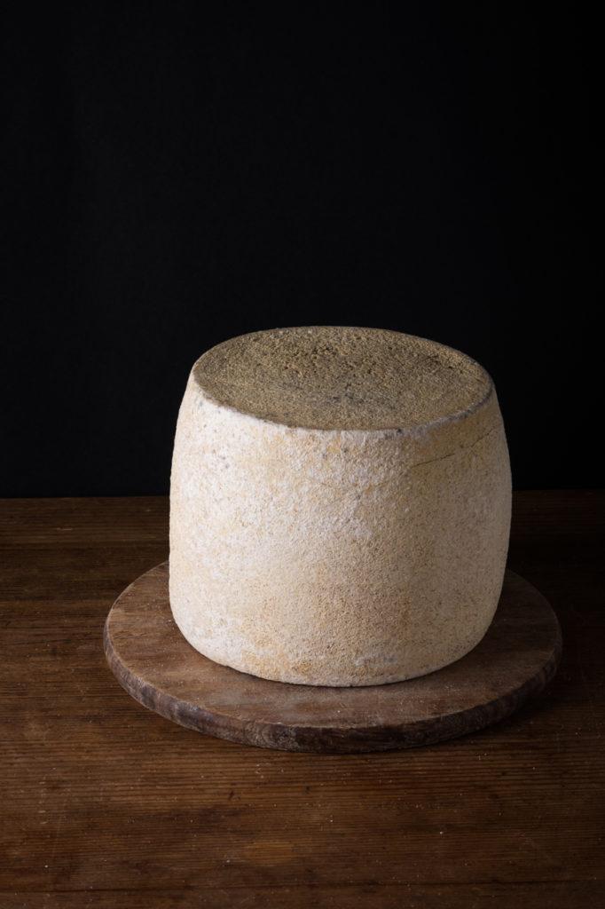 Aged Pecorino cheese