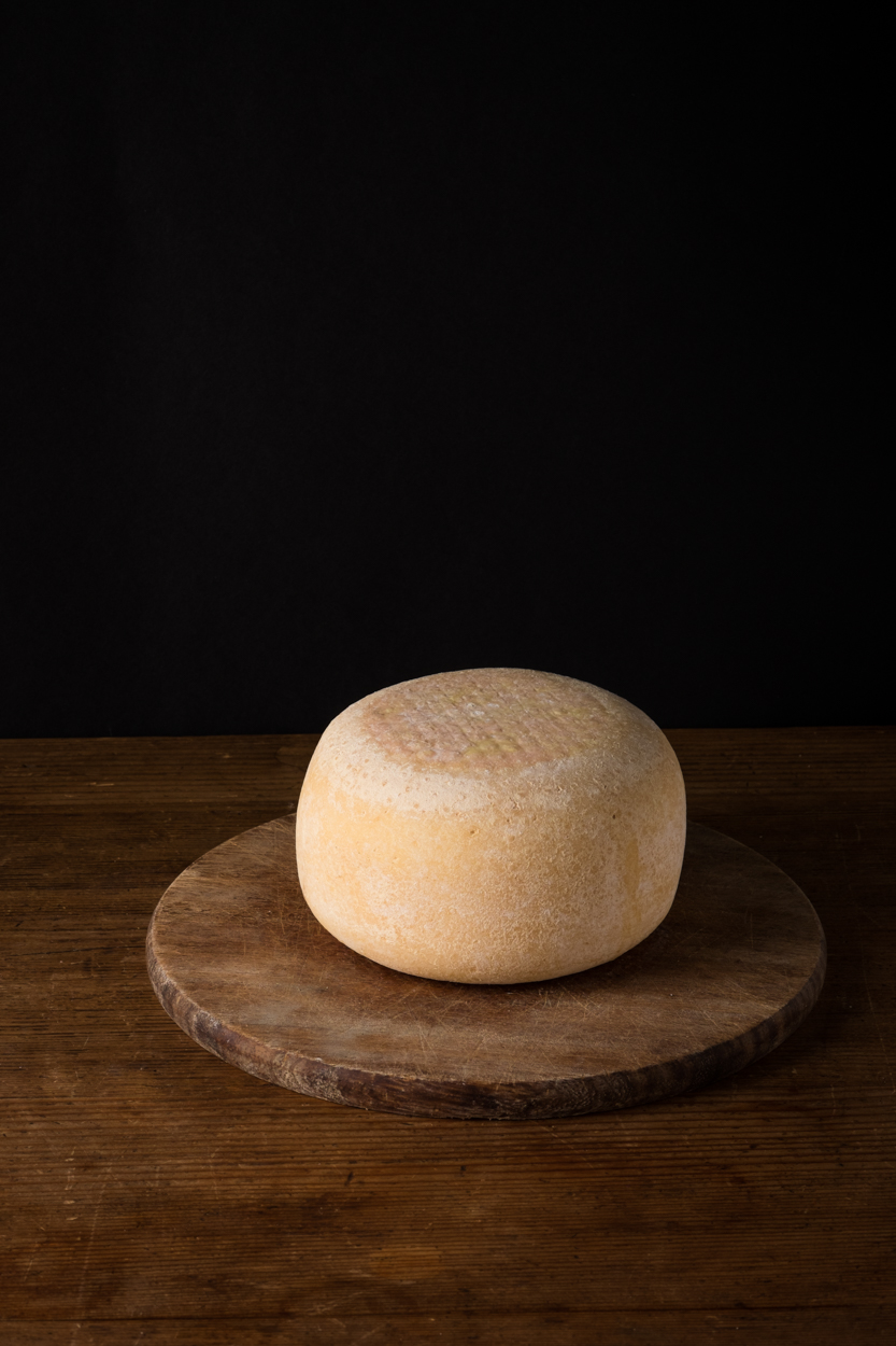 Fresh Pecorino cheese