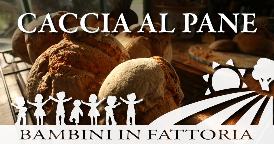bambini in fattoria caccia al pane
