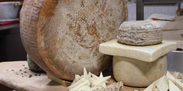 formaggio cose che non sai