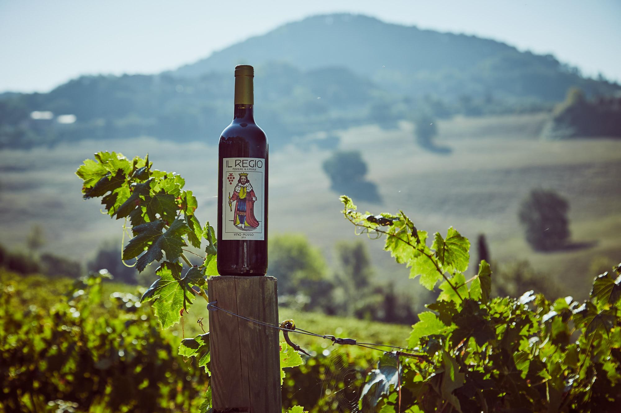 vino biologico pienza